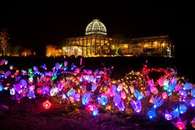 more sneak peek photos of dominion energy gardenfest of lights