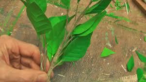 fake plants youtube