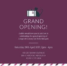 grand opening longcroft luxury cat hotel margate margate sat