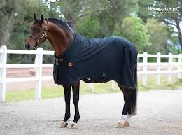 Rambo Lightweight Turnout Rug 97 Best Spring Summer Blankets 2016 Images On Pinterest Blankets
