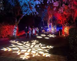 Stone Zoo Christmas Lights by 10 Best Exterior Images On Pinterest Christmas Decorating Ideas