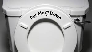 What Is The Meaning Of Bidet Should Men Put The Toilet Seat Down When They U0027re Finished Telegraph