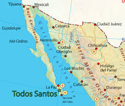 Cabo Map Kings Of Cabo