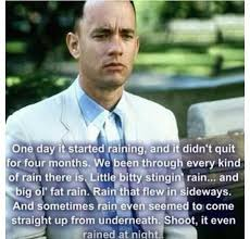 Forrest Gump Rain Meme - forrest gump rain quote google search quotes pinterest rain