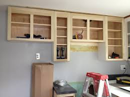 Home Depot Kitchen Cabinets Furniture Modern Design Of Home Depot Cabinet Refacing Reviews