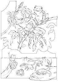 printable realistic mermaid coloring pages 2279 realistic mermaid