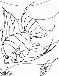 clown fish coloring pages 77447 label clown fish coloring pages