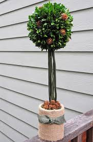 Preserved Boxwood Topiary Trees Faux Boxwood Topiary Homesfeed