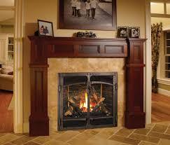 fireplaces extraordinary gas log insert fireplace natural gas