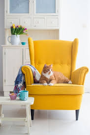 Gray And Yellow Chair Design Ideas Luxury Mustard Yellow Accent Chair My Chairs Pertaining To Mustard