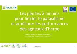 chambre agriculture 87 les plantes à tannins pour limiter le parasitisme et améliorer les pe