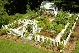amazing backyard vegetable garden design with home decoration