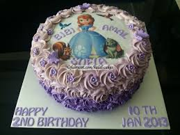 sofia the birthday cake square birthday cake 4 sofia the cartoonjpg 1066800