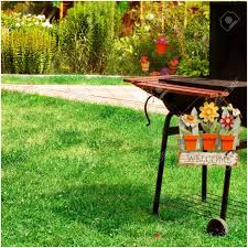 backyards stupendous illustration of backyard bbq scene stock