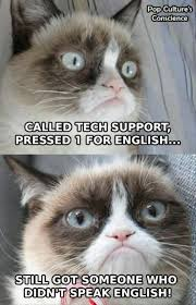 966 best sarcastic u0027grumpy cat u0027 images on pinterest grumpy kitty