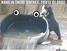 Meme Bucket - hang in there bucket by ben meme center