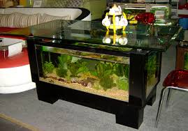 download wallpaper 3840x2400 fish aquarium swimming table glass