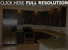 wall color ideas for kitchen with dark cabinets kitchen cabinet