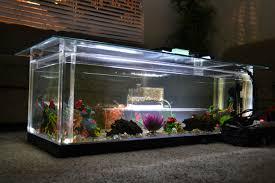 Aquarium For Home Decoration Ideas Fish Tank Coffee Table How To Build An Aquarium Coffee