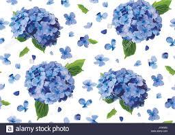 Flowers For Birthday Hydrangea Hortensia Flower Seamless Pattern Vector Watercolor