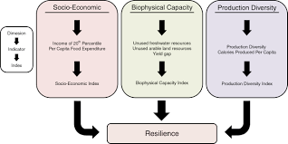resilience in the global food system iopscience