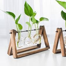 Home Decoration Accessories Ltd Aliexpress Com Buy O Roselif Vintage Style Glass Tabletop Plant