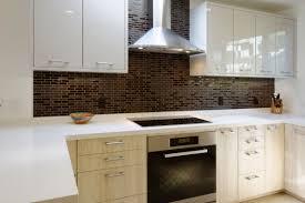a projects 005li kitchen