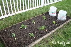 garden irrigation ideas garden design ideas