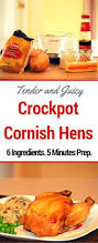 crockpot thanksgiving recipes crockpot cornish hens recipe housewife how to u0027s