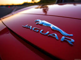 jaguar logo jaguar f type 2014 picture 183 of 208