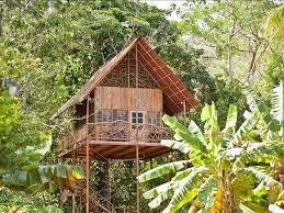 cool tree houses whoa you can rent a sweet tree house on airbnb steve aoki
