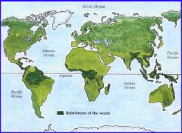 south america map rainforest where are the rainforests