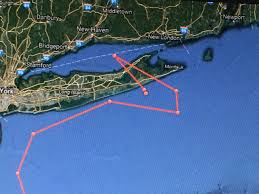 great white tracked in long island sound