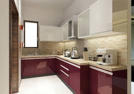 kitchen cabinet carpenter carpenter kitchen cabinet en carpenter ants in kitchen cabinets