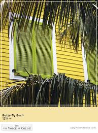 caribbean paint color collection features bright yellow paint