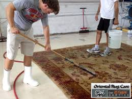 Area Rugs Miami 21 Best Images About Easy Tips For Synthetic Area Rug Cleaning In