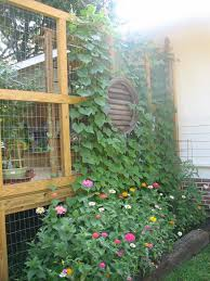 Landscaping Ideas For Backyard Privacy by Deck Privacy Wall With Wire Screen For Plants Garden Ideas And