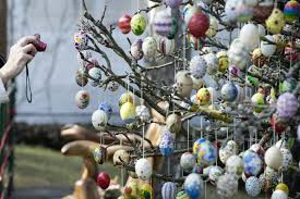 german easter egg tree easter bunny cometh german decorates tree with 10 000 eggs