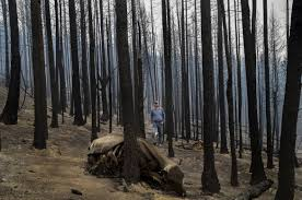 Washington Wildfire Area by 2015 Wildfire Topical Coverage At The Spokesman Review
