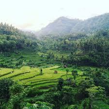 Ex Machina Waterfall Our 10 Favorite Things In Bali U2014 As We Roam