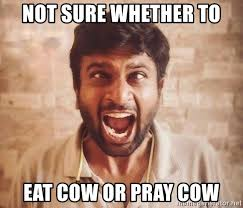 Indian Meme Generator - not sure whether to eat cow or pray cow the angry indian meme