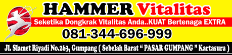 agen pusat jual hammer of thor di ngawi jawa timur 08134696999