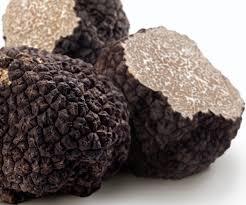 cuisiner truffe choisir la truffe choisir conserver et cuisiner la truffe
