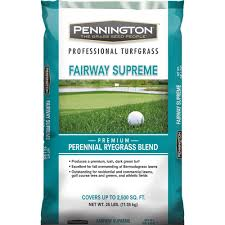 Fairway Home Decor by Pennington 25 Lb Fairway Supreme Perennial Ryegrass Blend