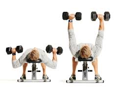 Chest Workout Dumbbells No Bench Chest Workout Dumbbell Without Bench Most Popular Workout Programs