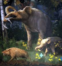 Tennessee wildlife tours images Gray fossil site virtual tours virtual tours history tn JPG