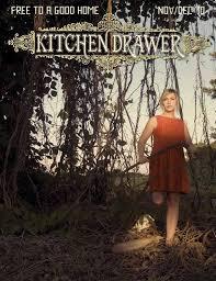 volume 2 issue 5 kitchen drawer illustrated by kitchen drawer