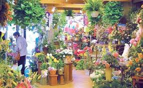 florists in flower shops in rajkot list of florists in rajkot