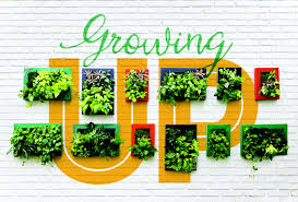 Vertical Gardening by Growing Up Vertical Gardening Is Fun For All Ages Orlando