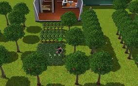 Sims 3 Garden Ideas The Sims 3 Gardening Classes Planting Watering You Garden